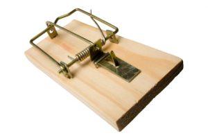 empty mousetrap